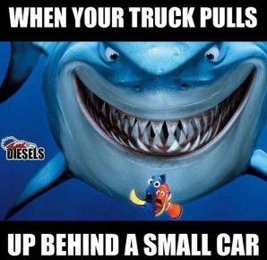 When your truck pulls up behind a small car; cars are friends, not food. | K&J Trucking